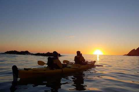 The Catlins: 2-Hour Sunrise Kayaking Tour
