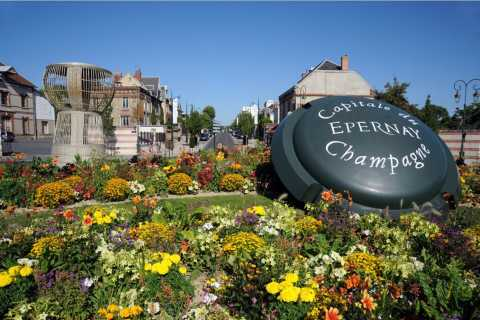Reims/Epernay: Champagne Region Private Tour with Tastings
