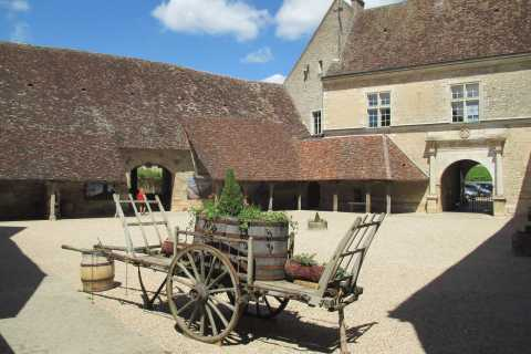 From Beaune or Dijon: Private Full-Day Wine Tasting Tour