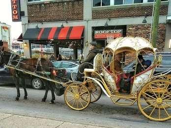 Innenstadt von Nashville: Cinderella Private Narrated Carriage