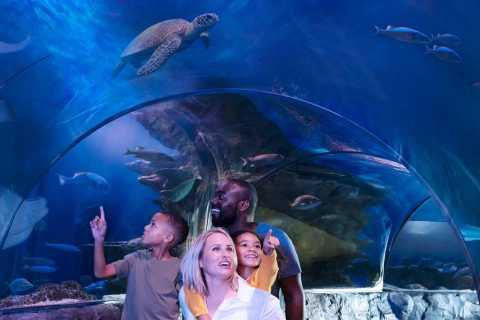 SEA LIFE Kansas City Aquarium General Admission