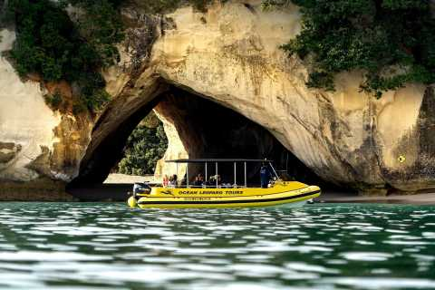 Whitianga: Cathedral Cove 2 Hour Boat Cruise