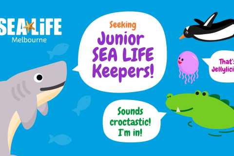 Melbourne: SEA LIFE Aquarium Entrance Ticket