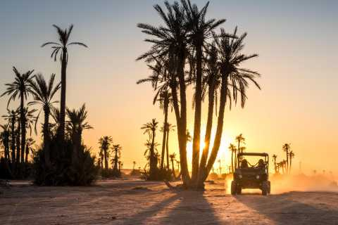 Marrakech Half-Day Palmgrove and Rock Desert Buggy Tour