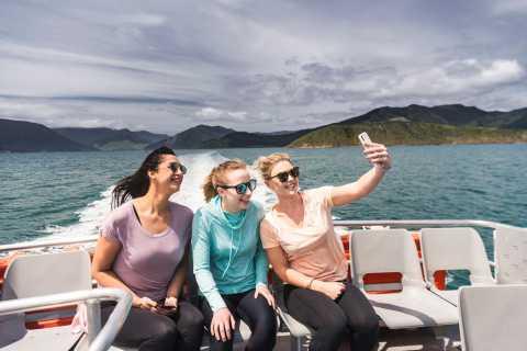 Ab Havelock: Ganztägige Kreuzfahrt mit dem Marlborough Sounds Mail Boat