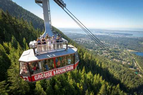 Vancouver: Private North Shore and Grouse Mountain Tour