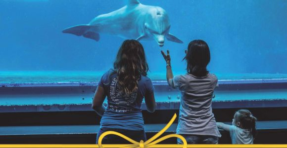 Aquarium of Genoa: Skip-the-Line Ticket