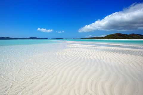Airlie Beach: Whitehaven Full-Day Eco-Cruise with Lunch