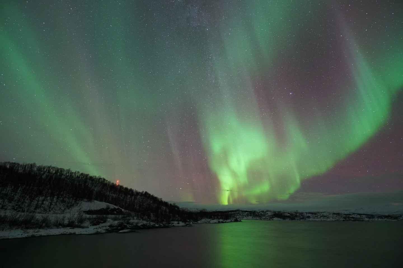 Kiruna: Nordlichttour mit BBQ-Dinner