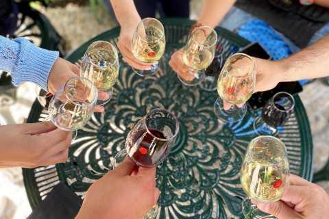 Porto: Wine Tour