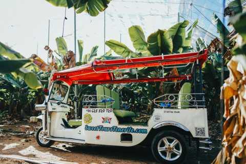 Costa Adeje: Tuk Tuk Tour of Farm