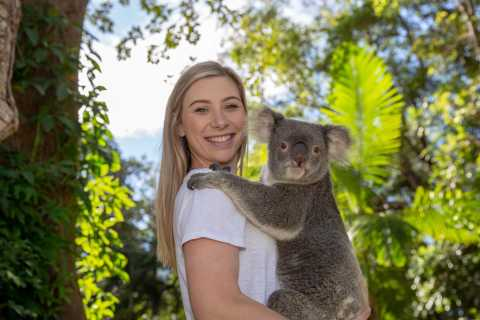 Currumbin Wildlife Sanctuary Ticket & Koala Photo
