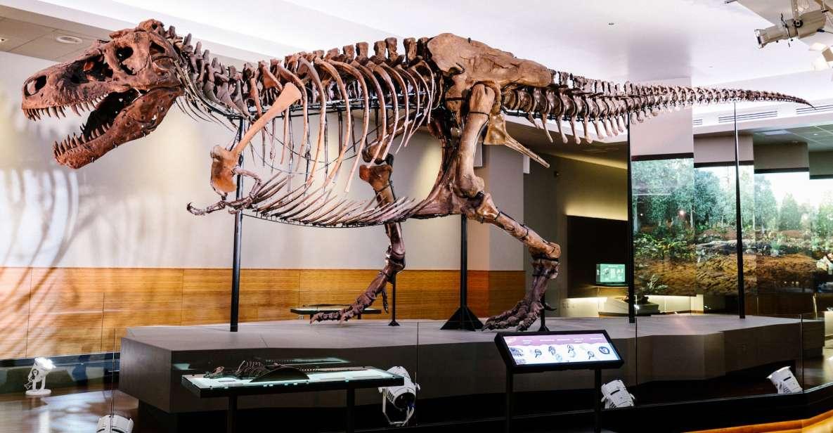 Chicago: Billet til naturhistorisk feltmuseum eller VIP-tur