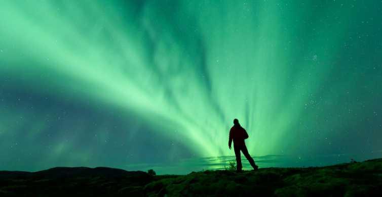 Från Reykjavik: Upplev norrsken på tre timmars rundtur