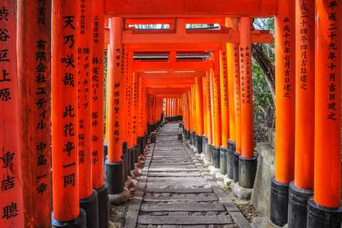 Kyoto: City Highlights Private Guided Tour