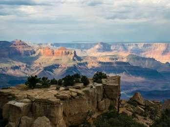 Von Sedona oder Flagstaff: Grand Canyon Ganztagestour