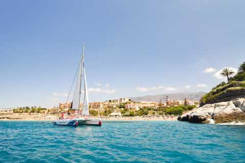 Tenerife: Dolphin and Whale Eco-Cruise with Food & Drinks