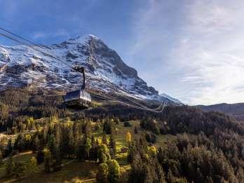 Ab Luzern: Tagestour zum Jungfraujoch – Top of Europe