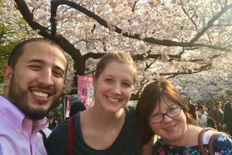 Sakura in Tokyo: Cherry Blossom Experience