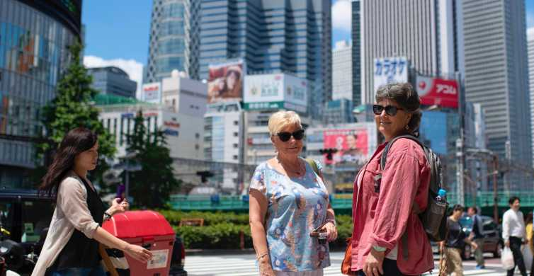 Tokyo's Upmarket District: Explore Ginza with a Local Guide