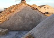 Trapani: 2-stündige Salt Flats Tour