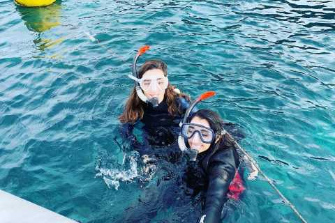 Catania: Etna and Snorkeling Tour by Jeep
