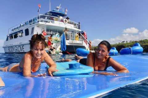 Ilha Grande: Excursão Ecológica a Snorkel e Observação de Golfinhos