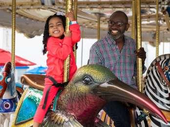 National Harbor: Das Carousel Flexible Date Ticket