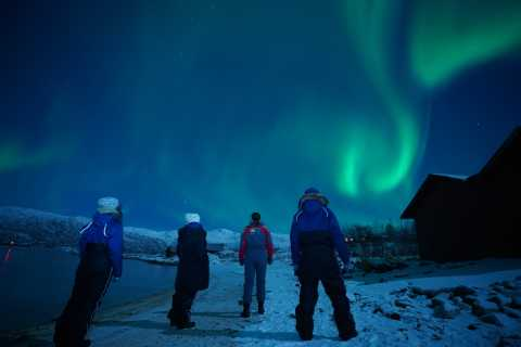 Tromsø: Small-Group Northern Lights Tour