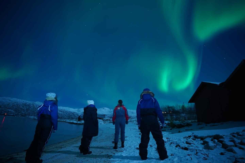 Tromsø: Nordlichttour in kleiner Gruppe