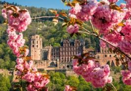 Quoi faire à Heidelberg - Heidelberg: bus touristique et visite du château