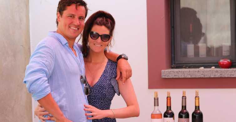 Lagos: Algarve Wine Tour in a Volkswagen T2 Van