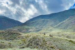 Mendoza: experiência de equitação de 3 dias nos Andes