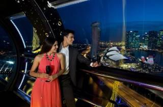Skip-the-Line-Ticket: Singapore Flyer Premium Experience