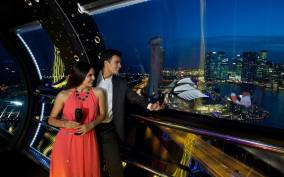 Skip-the-Line Ticket: Singapore Flyer Premium Experience