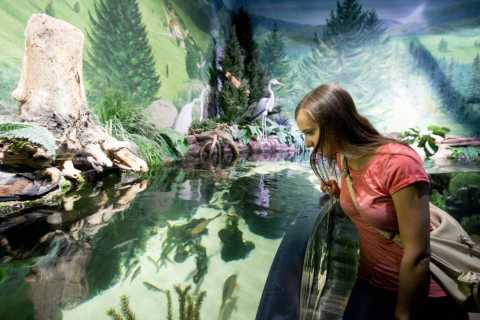 Munich: Day Ticket to Sea Life