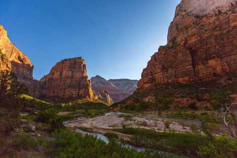De Springdale: excursão panorâmica com caminhada pelo Parque Nacional de Zion
