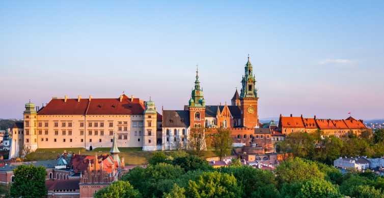 Krakova: Yksityinen Wawelin linnan kiertue ja Ohita jono -lippu