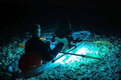 Transparent Kayak Night Glow 2-Hour Tour