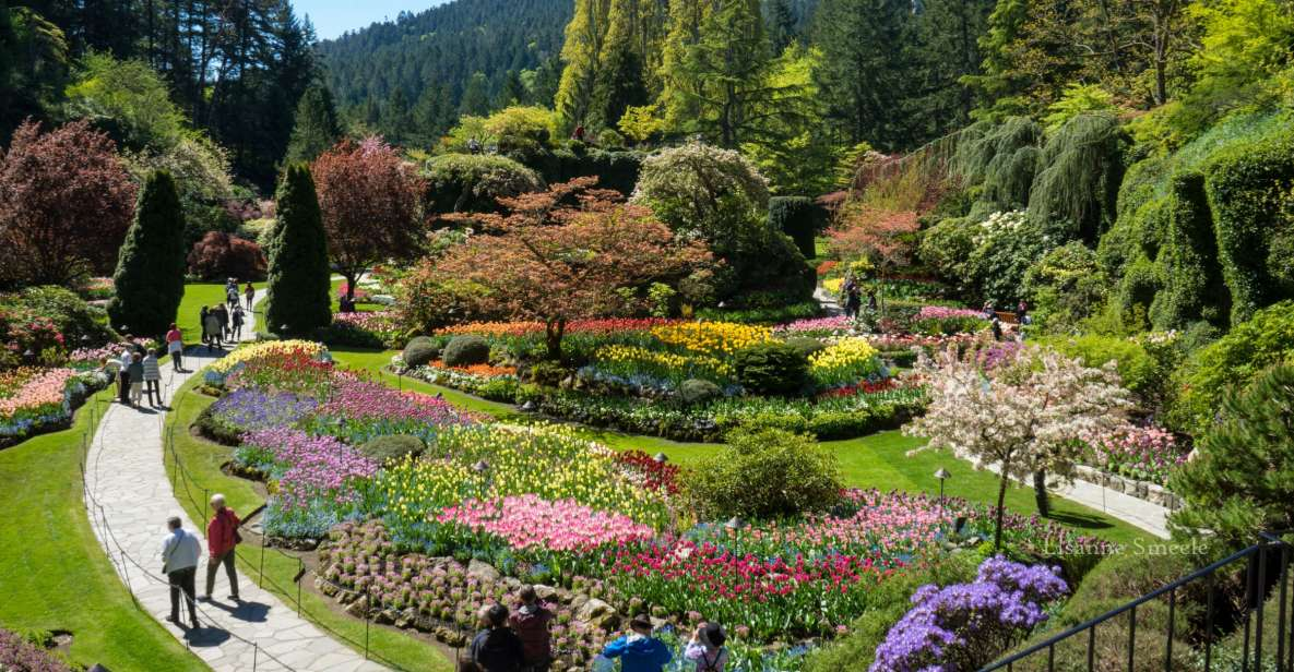 From Vancouver: Butchart Gardens & Victoria Sightseeing Tour