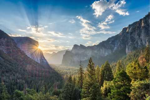 San Francisco to Yosemite Park Small Group Tour
