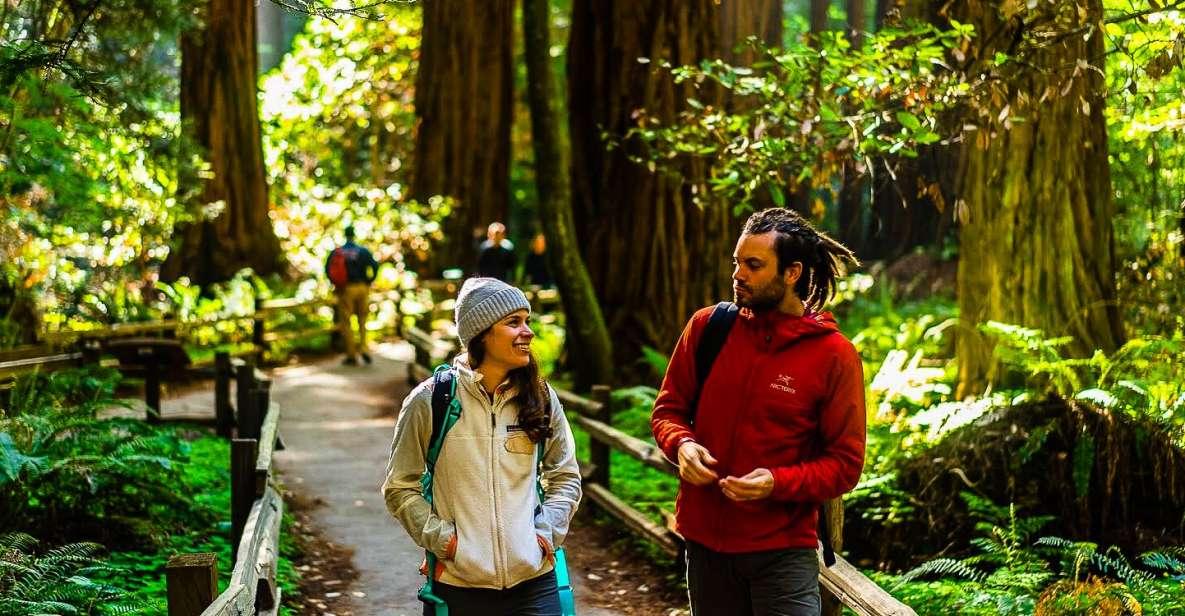 Muir Woods e Sausalito: tour da San Francisco