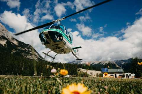 Canadian Rockies: Scenic Helicopter Tour