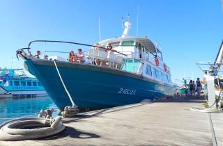 Fuerteventura: Fähren- und Eintrittsticket zur Insel Lobos