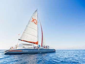Palma de Mallorca: Luxus-Katamaran-Tour mit Gourmet-Buffet