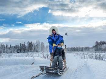 Palmer: Glacier Dogsled & Helicopter Tour