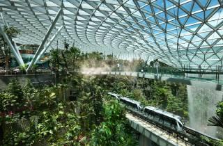 Jewel Changi Airport: Eintrittskarte für die Canopy Bridge