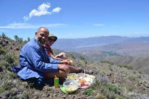From Mendoza: Full-Day Cordon del Plata Andes Trek
