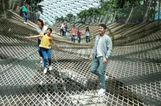 Jewel Changi Airport: Eintrittskarte für Manulife Sky Nets