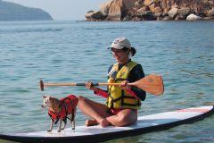 Acapulco Bay 1 hora Paddle Boarding